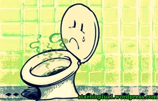 Cara Mengatasi WC Bau | Cara mengatasi toilet mampet|WC Mampet|Septictank Penuh|Wastapet Mampet|Saluran Mampet|WC Bau|Tanpa Sedot WC
